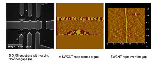 Carbon Nanotube Field Effect Transistors